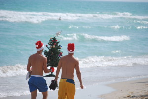 Miami Beach - Christmas Tree