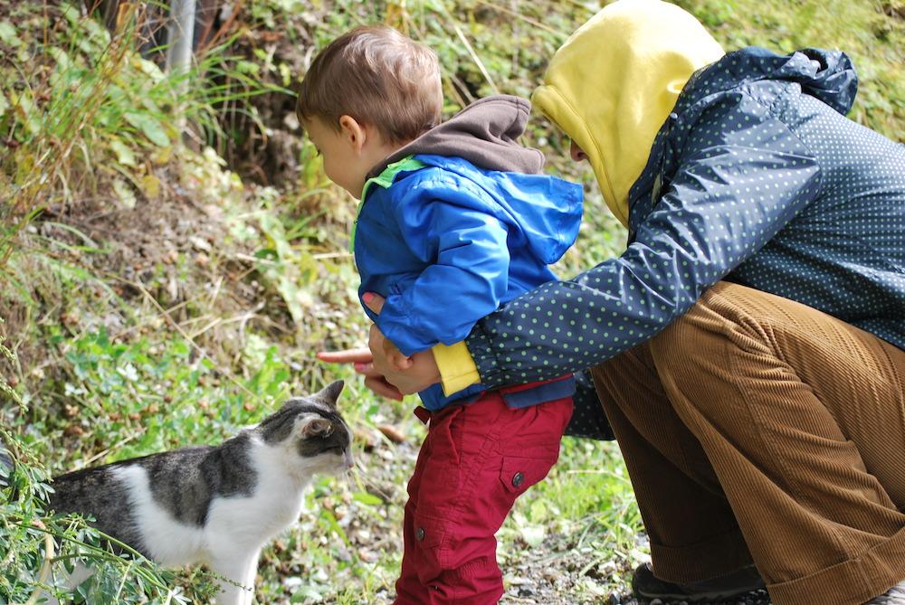 Austria con bambini - Peekaboo Trave Baby