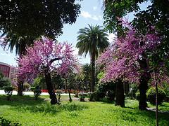Taranto Villa Peripato