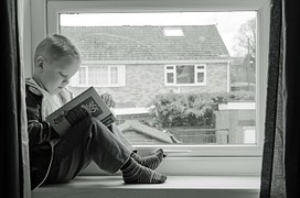 kids book - peekaboo travel baby