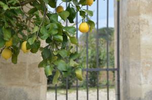 Lecce _slow tourism
