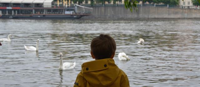 Praga con bambini: passeggiata lungo la Moldava sulle orme di Krtek la talpa