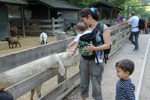 una mamma green - viaggiare con due bambini