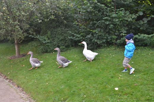 AArhus con bambini
